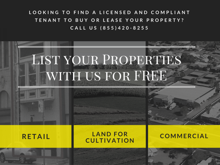 Commercial Landlord