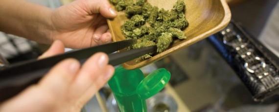 Marijuana dispensary permits