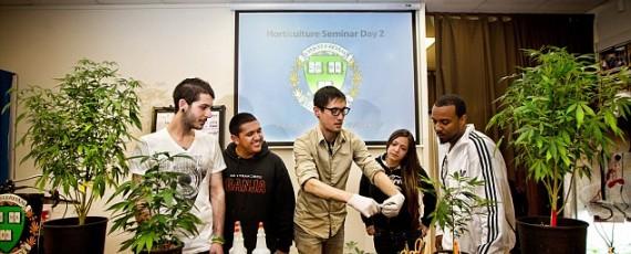 Marijuana university